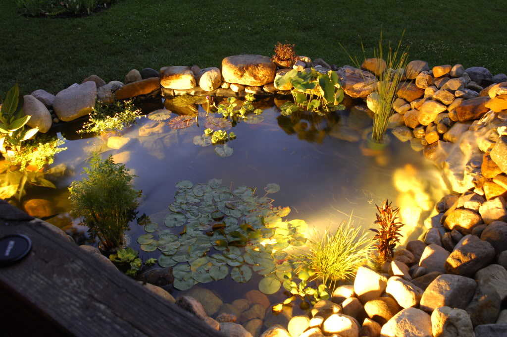 This beautiful pond is brought to life by the warmth of a few subtle lights that seamlessly blend into its existing structure