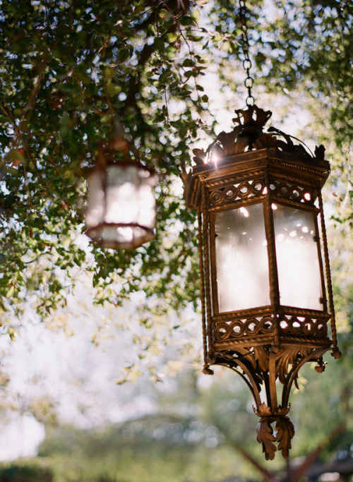 Create A Secret Garden With Hanging Tree Lights
