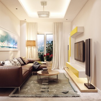 narrow-living-room-designs
