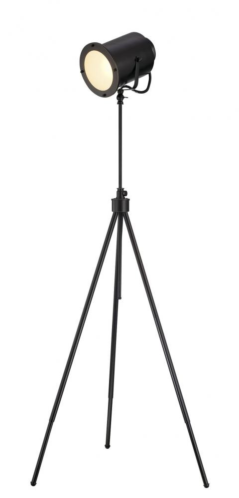 Directeur Metal Floor Lamp Dark Bronze